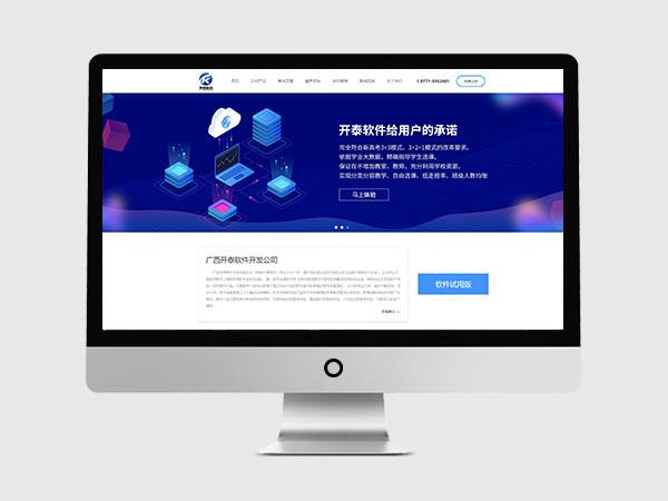 广西开泰软件开发公司